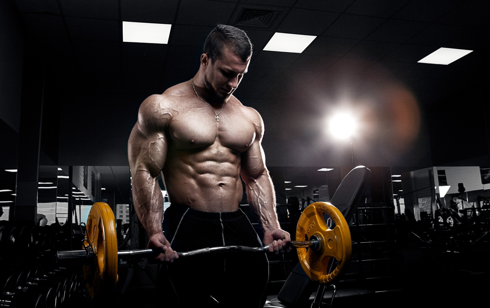 Armoured Vehicles Latin America ⁓ These Best Protein Powder